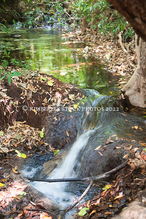 Cool, clear water flows into  a freshwater swimming hole in Talbot Bay, a welcome respite from the heat.  Saltwater crocodiles mean that the ocean is unsafe for swimming.