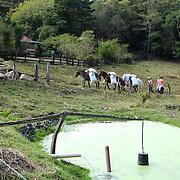 Farm in Monteverde Costa Rica