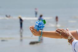 Montevideu, Uruguai    02/Fev/2006.Mao do Pai-de-santo e mao da devota com oferenda de rosa azul  na Festa de Iemanja na Playa Ramirez, em Montevideu/ Devotees of the Afro-Brazilan  sea-goddess, Yemanja, during the celebrate day.Father-of-saint makes a pass at the devout with a blue rose to offer Iemanja..Foto Adri Felden/Argosfoto