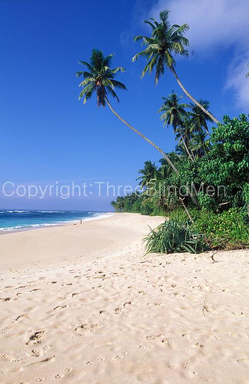 Sri Lanka.Beach on the south coast of the island.