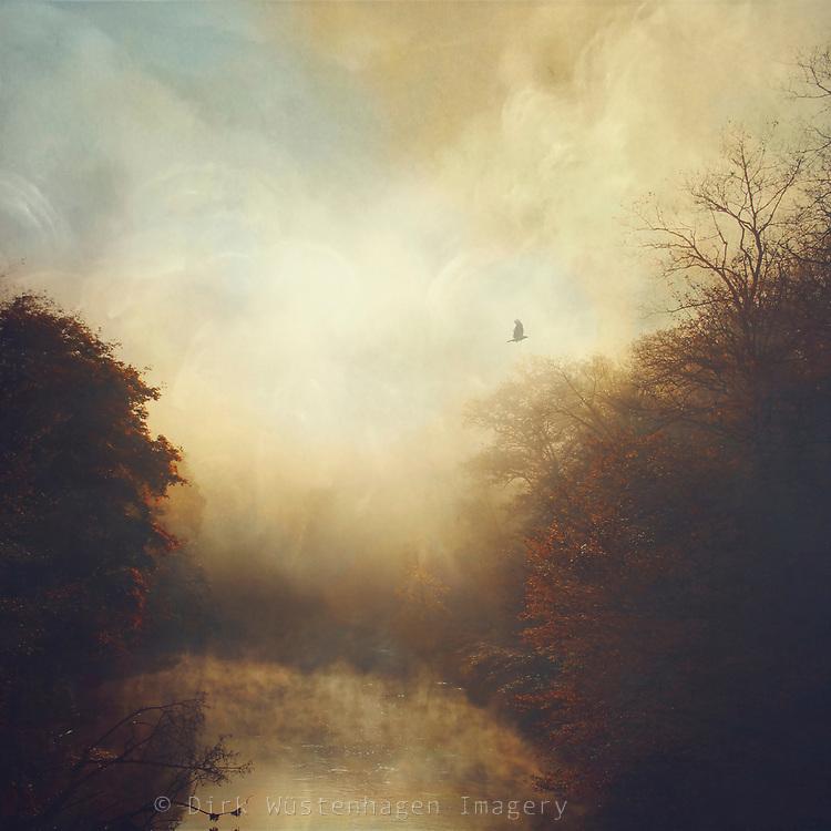 Impressionistic view of rising morning fog at river Wupper/Germany.<br /> Burgholz/Kohlfurt -Wuppertal<br /> <br /> https://society6.com/product/mystic-river-usl_print#1=45