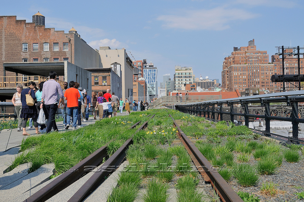Perspective on High Line Park