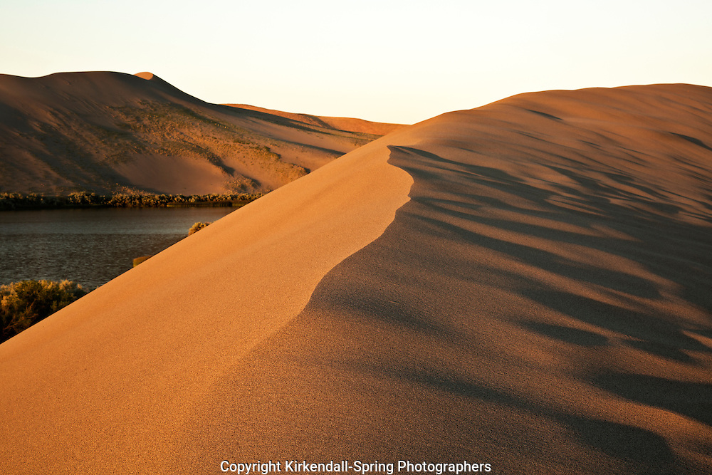 ID00656-00...IDAHO - Early morning on a dune overlooking Dune Lake at Bruneau Dunes State Park near Mountain Home.