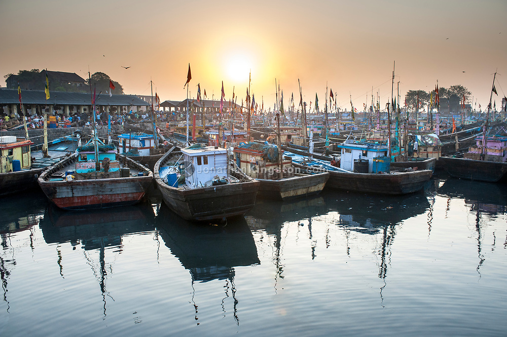 Colorful fishing boats in a harbor in Mumbai, India.