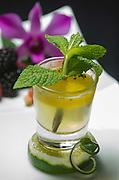 Mojito Drink, Intercontinental Hote, Carolina, Puerto Rico. 2013