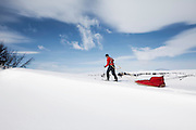Morfar - Sweden ski touring, Fjällnäs