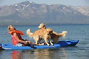 Laura Asbill enjoys kayaking with her golden retrievers while attending Camp Winnaribbun at Lake Tahoe.