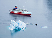 In February 2005 on the red and white ship M/S Explorer, we anchored near an arched blue iceberg at Neko Harbor, Graham Land (the north portion of the Antarctic Peninsula), Antarctica. Reuters News Pictures Service published this image in stories on the M/S Explorer, which sank after hitting an iceberg in 2007 and now lies sunk 600 meters deep in the Southern Ocean. The Explorer, owned by Canadian travel company GAP Adventures, took on water after hitting ice at 12:24 AM EST on Friday November 23, 2007. 154 passengers and crew calmly climbed into lifeboats and drifted some six hours in calm waters. A Norwegian passenger boat rescued and took them to Chile's Antarctic Eduardo Frei base, where they were fed, clothed, checked by a doctor, and later flown to Punta Arenas, Chile. The ship sank hours after the passengers and crew were safely evacuated.