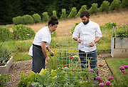 Chef Doug Adams of Imperial and chef Mei Lin, Penner-Ash pre-IPNC Top Chef dinner, 2015, Willamette Valley, OregonPenner-Ash pre-IPNC Top Chef dinner, 2015, Willamette Valley, Oregon