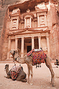 Camel waiting for tourists in front of The Treasury (Al Khazneh) in Petra, Jordan.