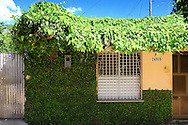 Vine covered house in Bauta, Artemisa, Cuba.