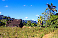 Barn in the San Carlos area, Pinar de Rio, Cuba.