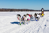 Musher Lars Monsen competing in the 45rd Iditarod Trail Sled Dog Race on the Chena River after leaving the restart in Fairbanks in Interior Alaska.  Afternoon. Winter.