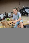 Flea Dip Dog Project in Bristow