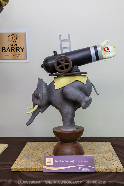 Show Piece: Marina Butterfly. Cacao-Barry Callebaut Canadian Intercollegiate Chocolate Competition April 21 - 22, 2012.