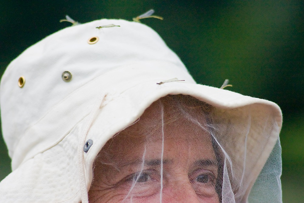 Dragonflies sit atop Liana Welty's hat and headnet, Manu National Park, Peru.