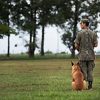 "Story: ""War Dog"" Training in Brasilia, Brazil"