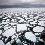 February 19th 2007. Ross Sea. Southern Ocean. Sea ice floats through the Ross Sea.