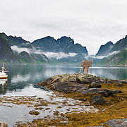 A boat anchors in Reinefjord beneath impressive mountain peaks at the tiny island fishing village of Sakrisøy, which is connected by bridge to Reine on Moskenesøya (The Moskenes Island) and to Hamnøy in the Lofoten archipelago, Nordland county, Norwegian Sea, Norway. Sharply glaciated peaks rise above the Norwegian Sea. Panorama stitched from 3 overlapping photos.