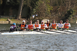 2012.02.25 Reading University Head 2012. The River Thames. Division 1. Lea Rowing Club IM1 8+.