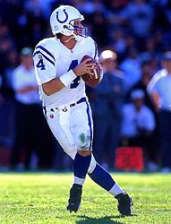 Jim Harbaugh, 1995
