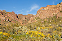 Arch Canyon in Organ Pipe Cactus National Park