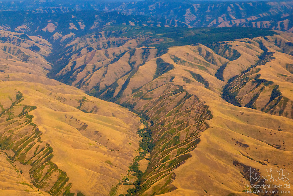 This aerial view shows the rough terrain of the Blue Mountains in Eastern Oregon. This was the last formidable mountain range that early settlers faced on the Oregon trail.