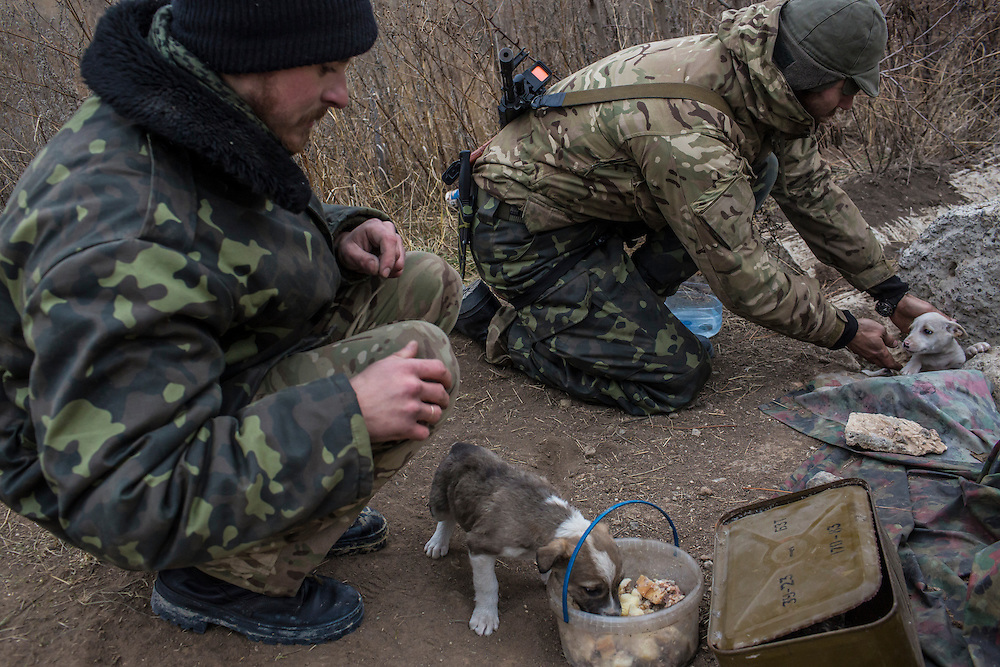 "PERVOMAISKE, UKRAINE - NOVEMBER 17, 2014: ""Patrick,"" left, and Grigoriy Matyash, right, of the 5th platoon of the Dnipro-1 brigade, a pro-Ukraine militia, feed puppies at their post underneath a bridge in Pervomaiske, Ukraine. CREDIT: Brendan Hoffman for The New York Times"