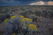 Eastern Oregon desert