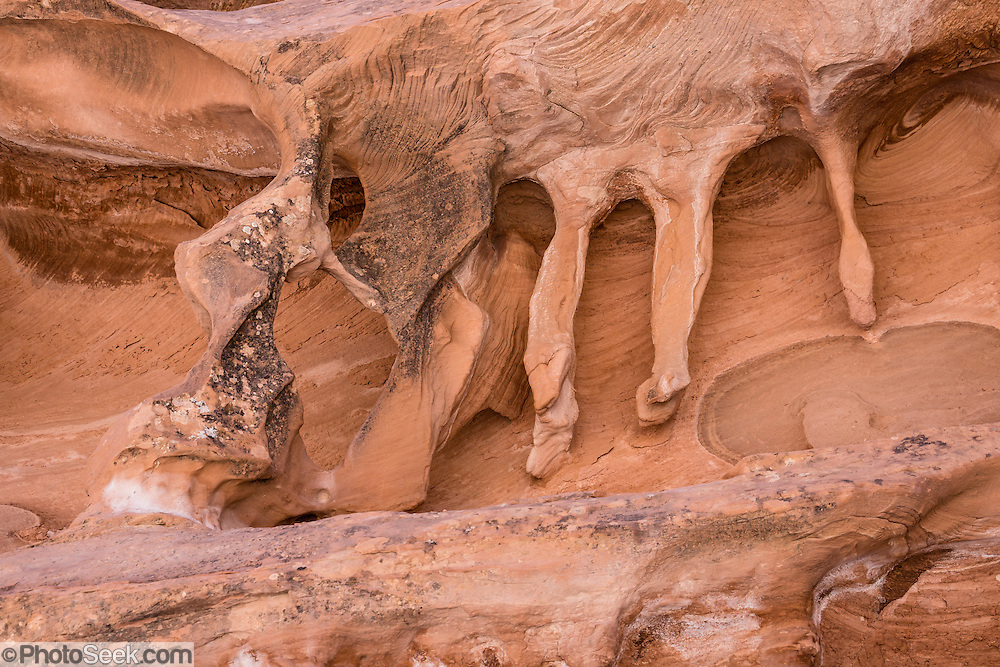 Miniature arches erode from orange sandstone on the walls of Crack Canyon, on federal BLM land in San Rafael Swell, near Goblin Valley State Park, Utah, USA. The Bureau of Land Management (BLM) is an agency within the United States Department of the Interior that administers American public lands.