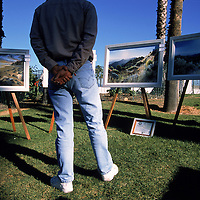 man viewing roadside artwork