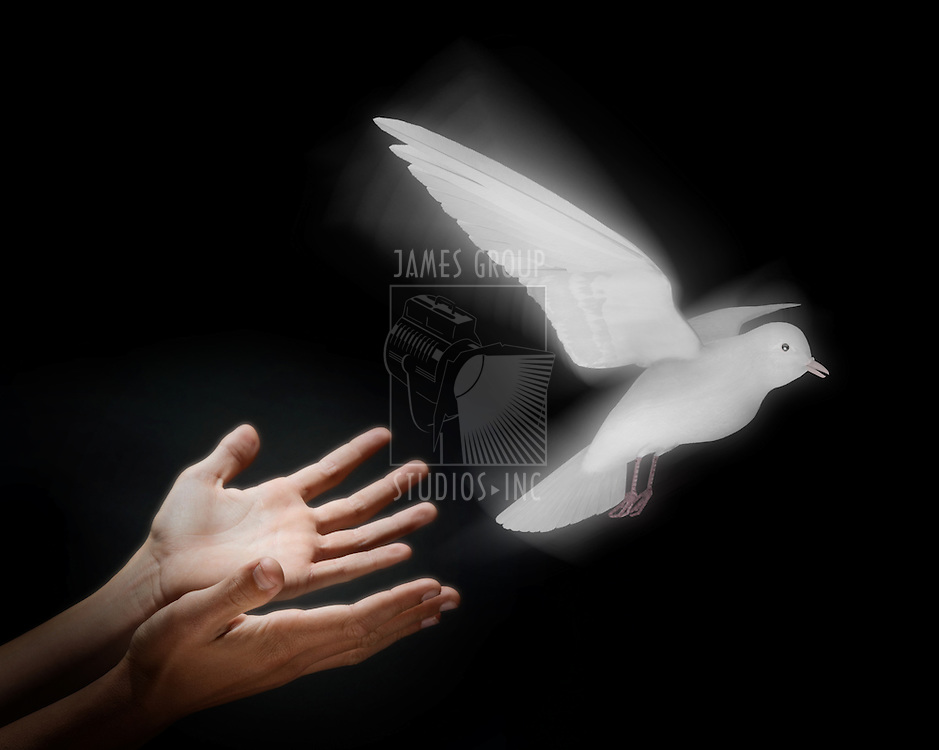 Two hands on a black background releasing a luminous dove into flight