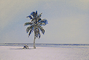 Image of Smathers Beach in Key West, Florida, American Southeast, photo illustration  (toned black & white conversion)