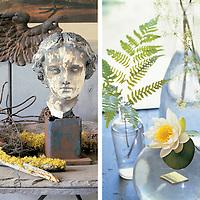 Home Garden Still Life Decor