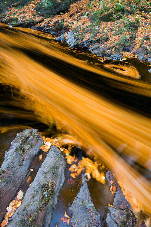 River North Esk loaded with beech leaves, Scotland