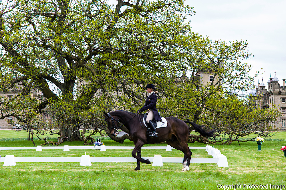 Floors Castle, Kelso, Roxburghshire, UK. 14th May 2015. Four Star eventer Emily Galbraith from the Scottish Borders on home turf at the Floors Castle Horse Trials in Kelso during the dressage category.