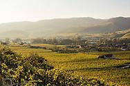 Wachau, Austria, Lower Austria, Weissenkirchen