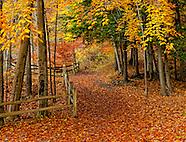 NY State Parks