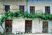 A grape vine grows across doors and windows of an old cracking stucco house in Kastraki, Meteora, Greece, Europe.