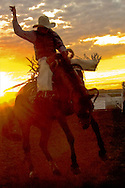 Saddle Bronc rider at sundown, Miles City Bucking Horse Sale, Montana<br /> NOTE- this image was created to be grainy and abstract