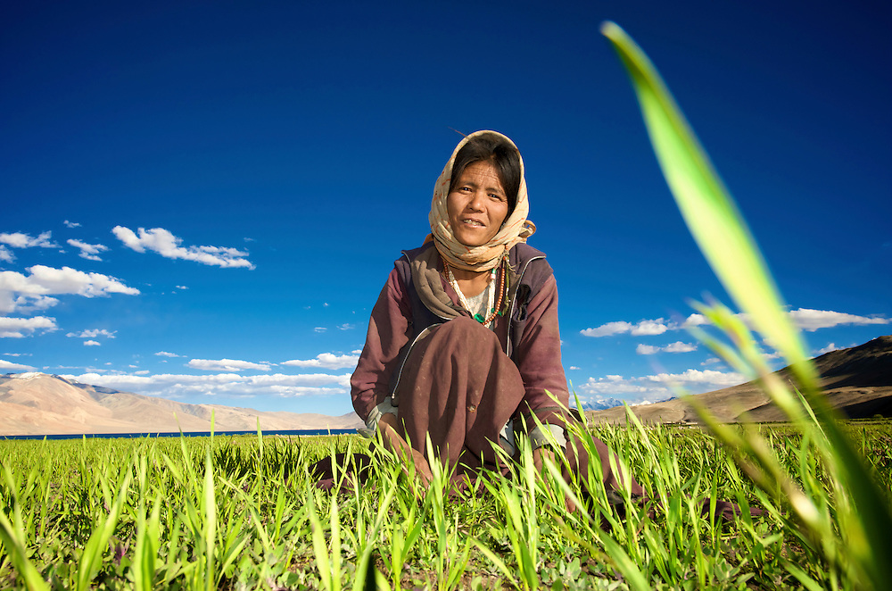 Taken in the village Korzok, situated on the bank of lake Tso Moriri in Ladakh, while this lady was plucking some vegetables from the wheat field...<br /> <br /> At 4600 mtrs. above the sea level, these are said to be the highest fields of the world...