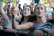 Fans enjoy Walk the Moon at Bunbury Music Festival at Yeatman's Cove in Cincinnati, Ohio on July 12, 2013.