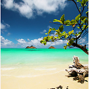 landscape photography ,Hawaii,fine art photography,beach image,