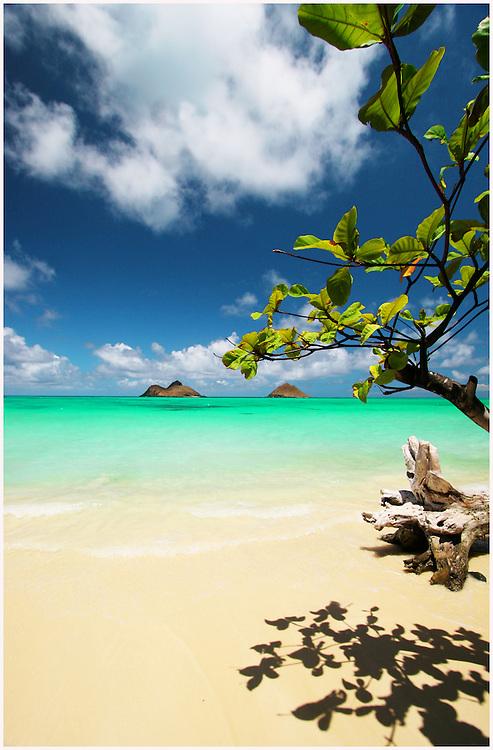landscape photography ,Hawaii,fine art photography,beach image,