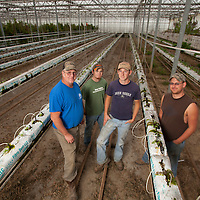 (Left to Right) Bill, Phillip, Matthew and Wesley VanScoy Farms Ridgeview, Ohio.(Jodi Miller)