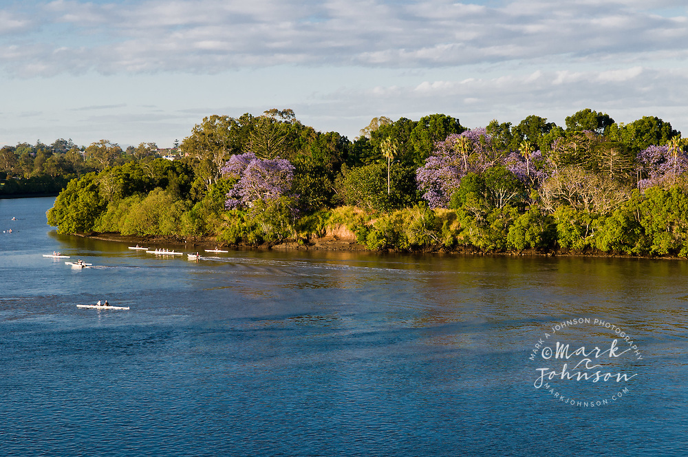 Rowing teams on the Brisbane River, Brisbane, Queensland, Australia