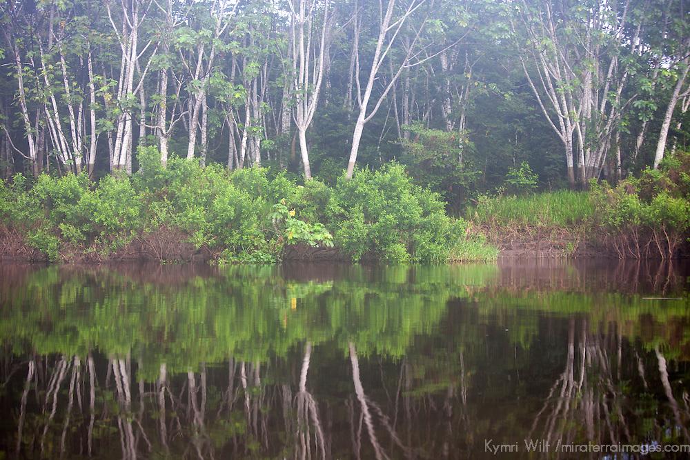 South America, Peru, Amazon. Peruvian Amazon reflections.