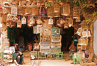 Bird Shop, Hanoi Old Quarter, near Hoan Kiem lake, has the original street layout and architecture of old Hanoi. At the beginning of the 20th century the entire city consisted of only about 36 streets, most of which are now the old quarter. Each street had merchants and artisans specialized in a particular trade such as silk, jewellery, coffee and herbalists. The street names reflect these specializations, although few of them remain exclusively in their original commerce.