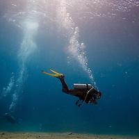 Dahab, Red Sea