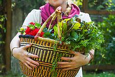 Garden - Vegetables, farming photos